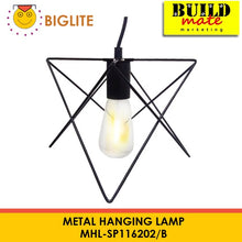 Load image into Gallery viewer, BIGLITE Metal Hanging Lamp MHL-SP11620C/C