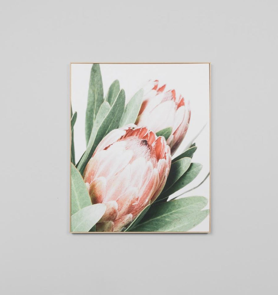 Protea Canvas