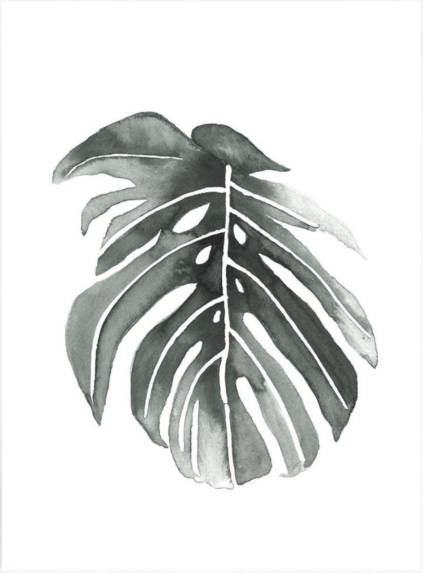 Philodendron Leaf print