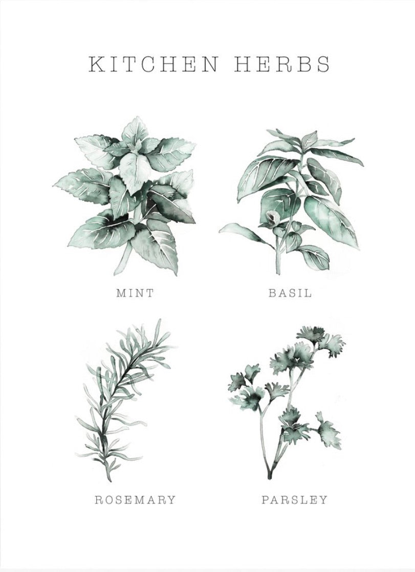 Kitchen Herbs - Print