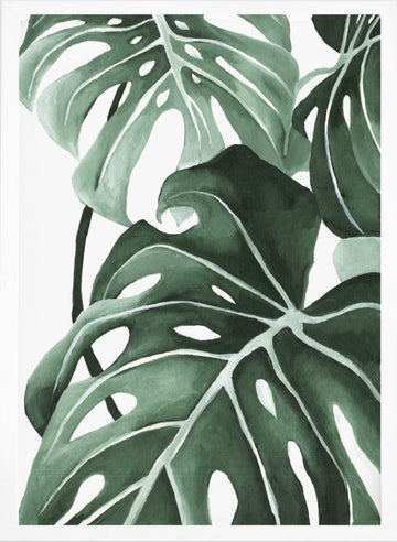 Philodendron Wall - Print
