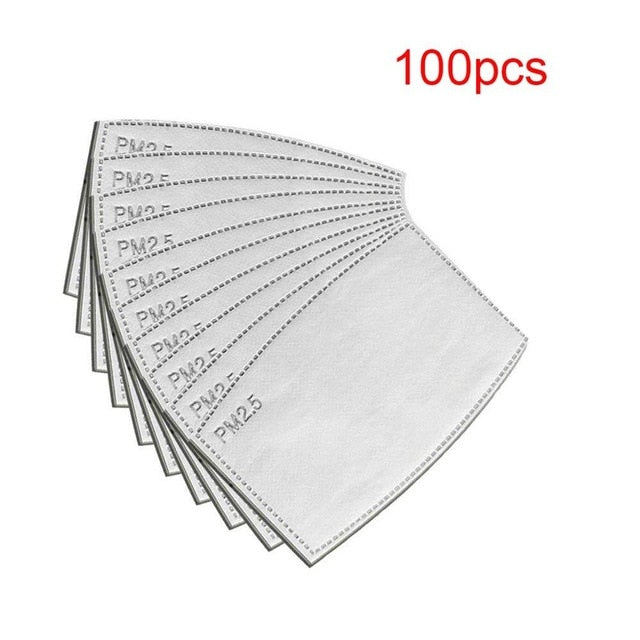 Pack of PM 2.5 Filters (100 Pcs)