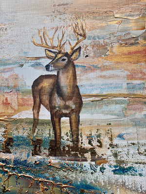 Red deer on Värmdö