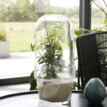 Glass Planter with Dome Cover