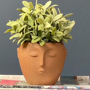 Terracotta Face Plant Pot