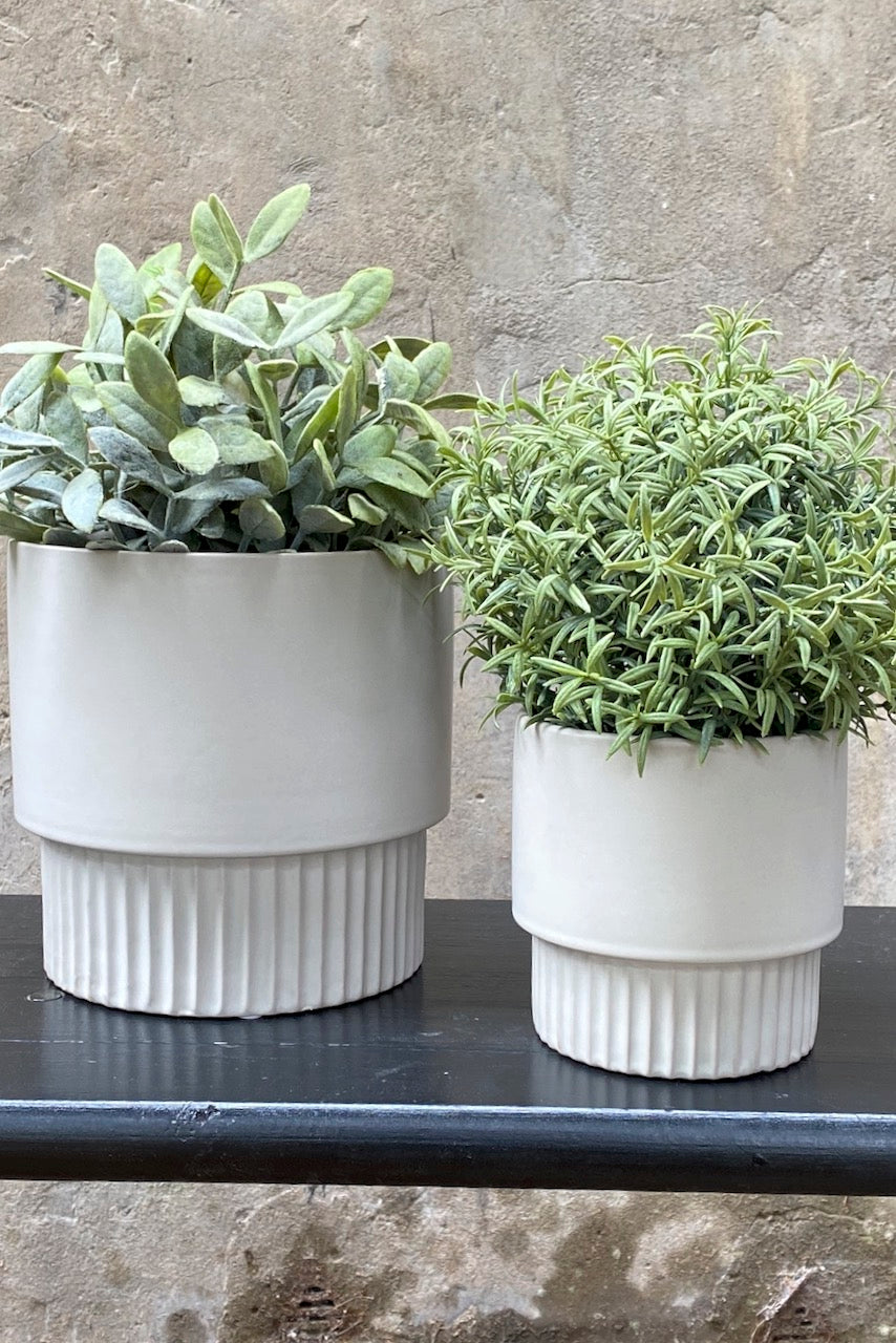 Ceramic Matte Grey Planter