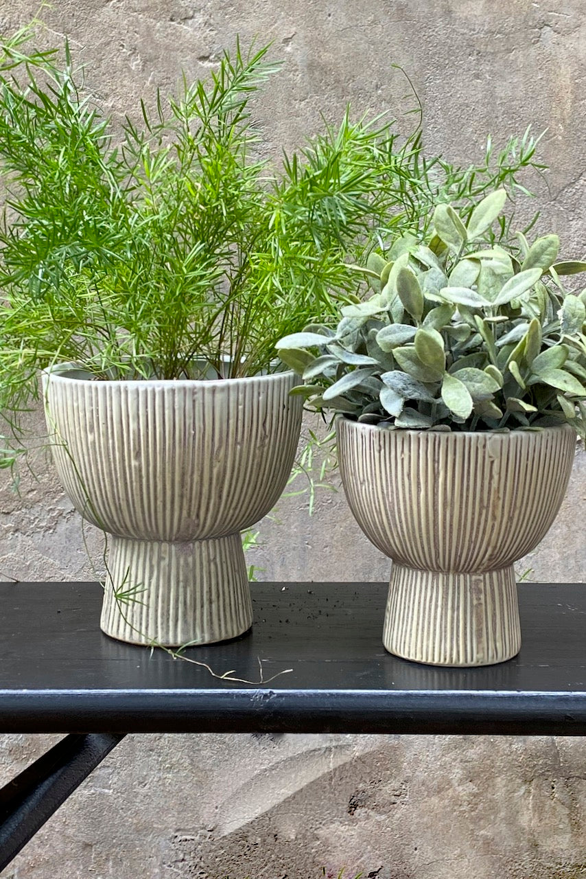 Striped Bowl Planter