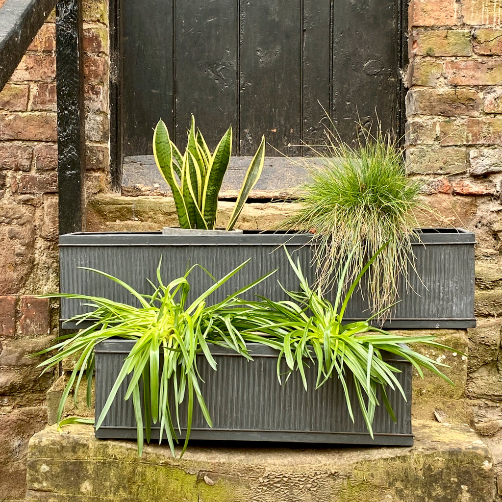 Galvanised Steel Window Box