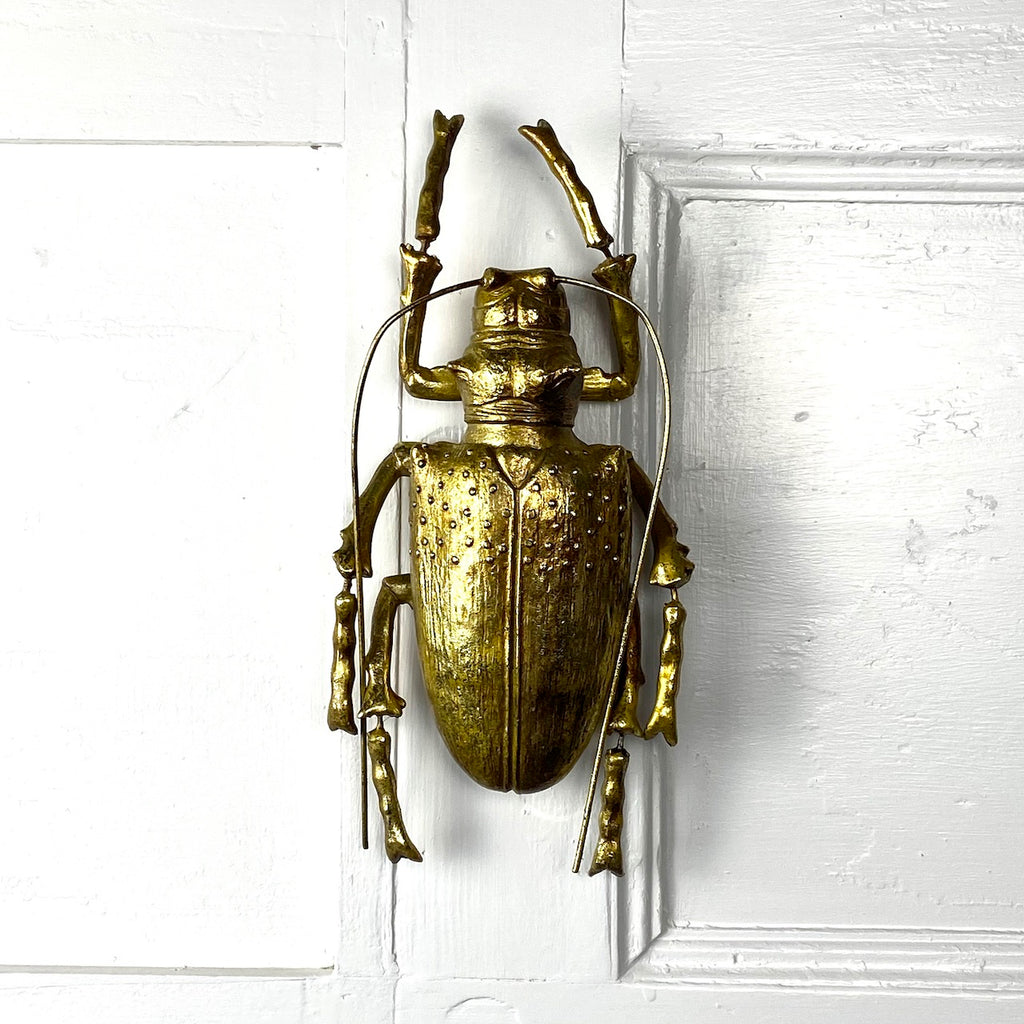 Long Horn Beetle Wall Decor