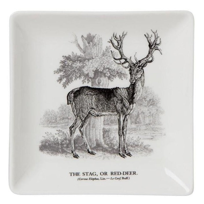 Bewick Stag Trinket Tray
