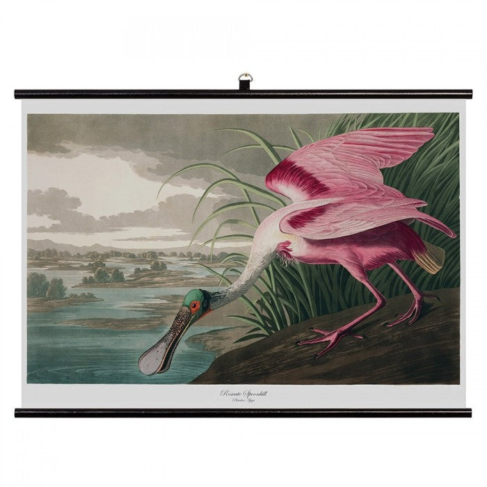 Spoonbill Cotton Canvas Wall Chart