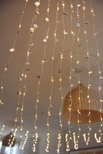 Silver Leaf Light Curtain