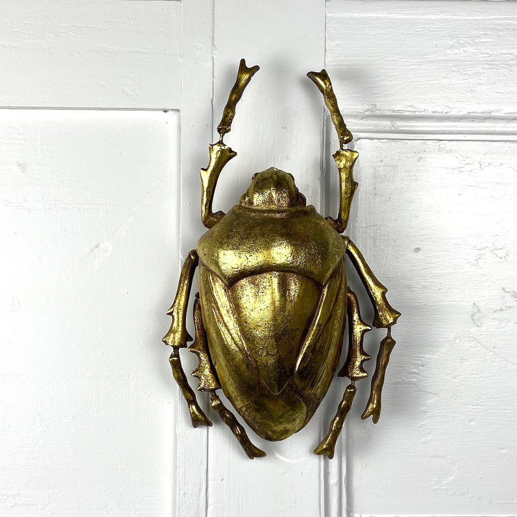 Gold Water Beetle Wall Decor