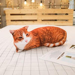 1PCS 50CM 3D Simulation Cats Pillow, Cute Cat Washable Plush Stuffed Pillow, Kids Toy, Sofa Pillow, Home Decoration - MH