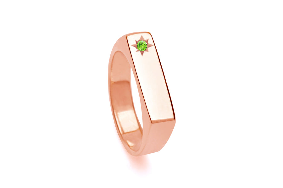 Birthstone Signet Pinky Ring Gold & Rose Gold - Serpent & the Swan