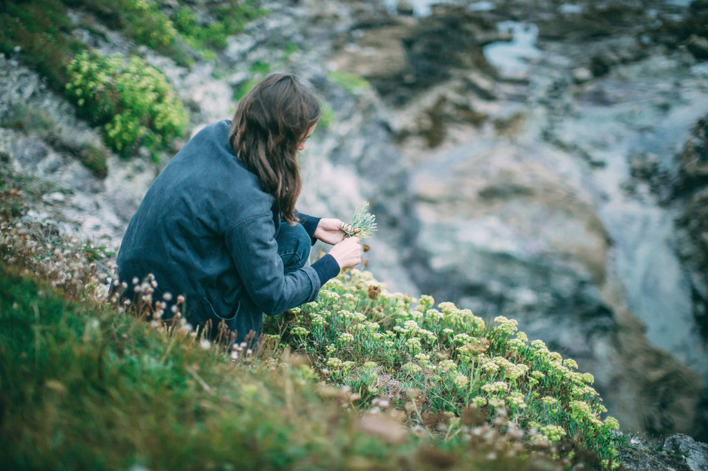 Discover: Rock Samphire