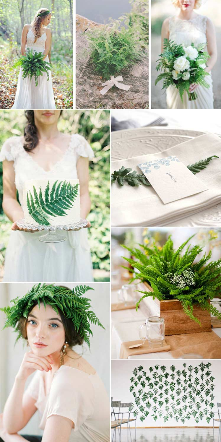 beautiful ideas to include ferns in your wedding day planning