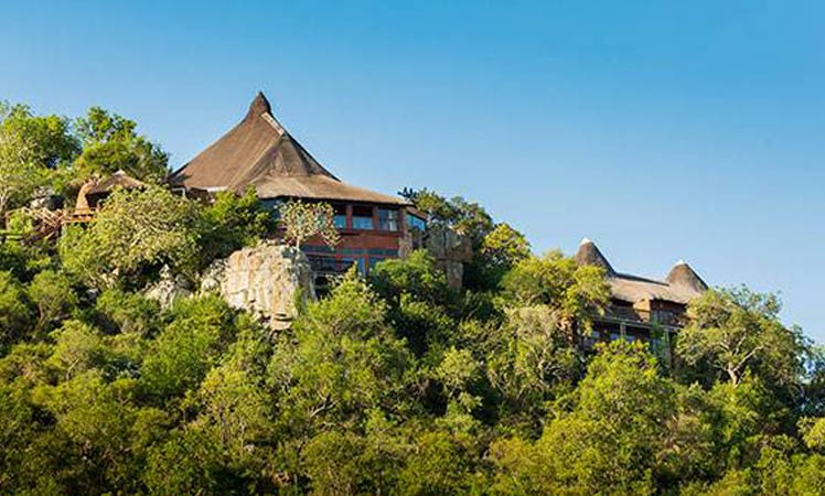 Destination wedding at Ulusaba Africa