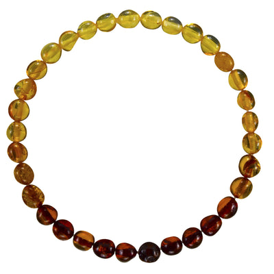 Adult Amber Bracelet Bean - Rainbow