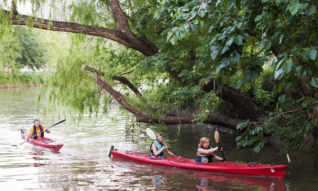 2 red kayakers paddling under a tree along the river