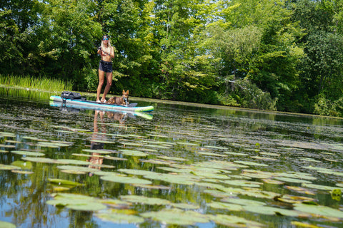 kayla jocumsen and her dog roo fishing on a sup