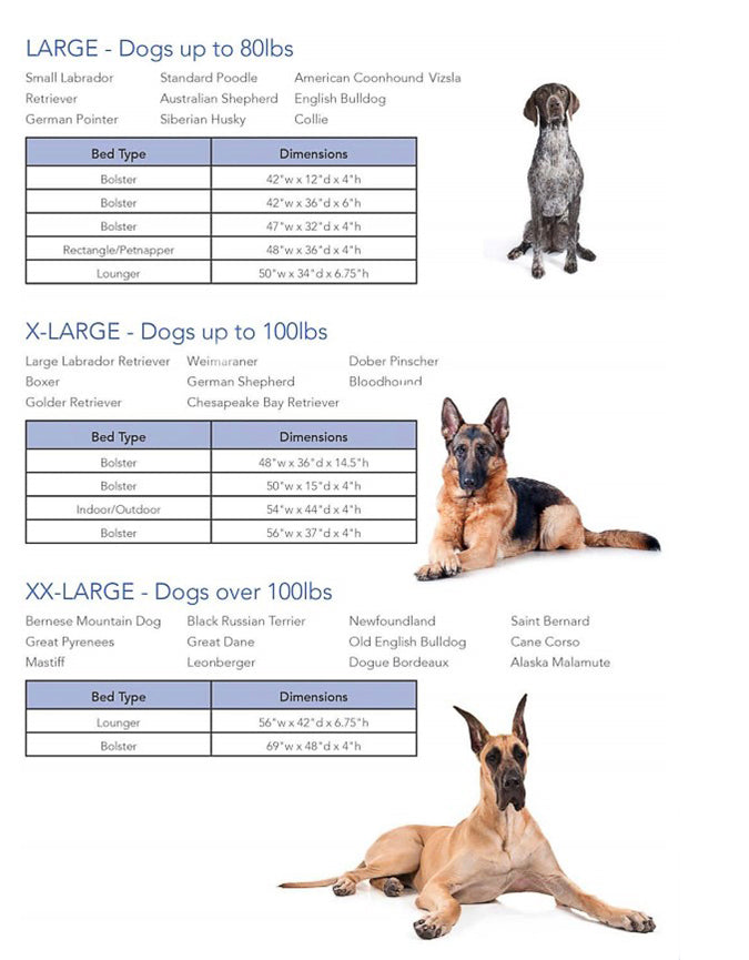 dog bed size guide xl-xxl