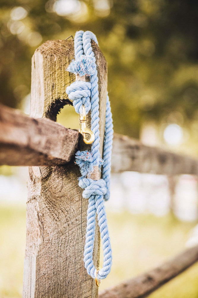 Load image into Gallery viewer, Cotton Rope Dog Leash - Sky Blue - Vivid Canine