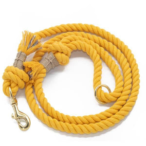 Load image into Gallery viewer, Cotton Dog Leash - Yellow - Vivid Canine