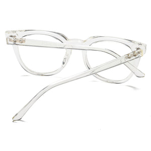 back of eyeglasses, clear temple arms