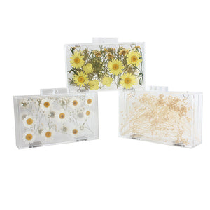 women's evening party Rectangle clutch acrylic transparent handbag