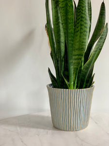 Striated Stoneware Planter