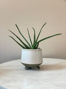 Footed Stoneware Planter