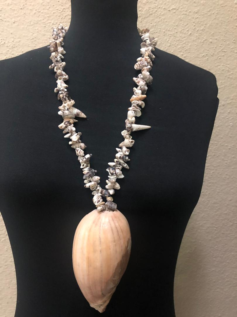 Native Shell Long Necklace