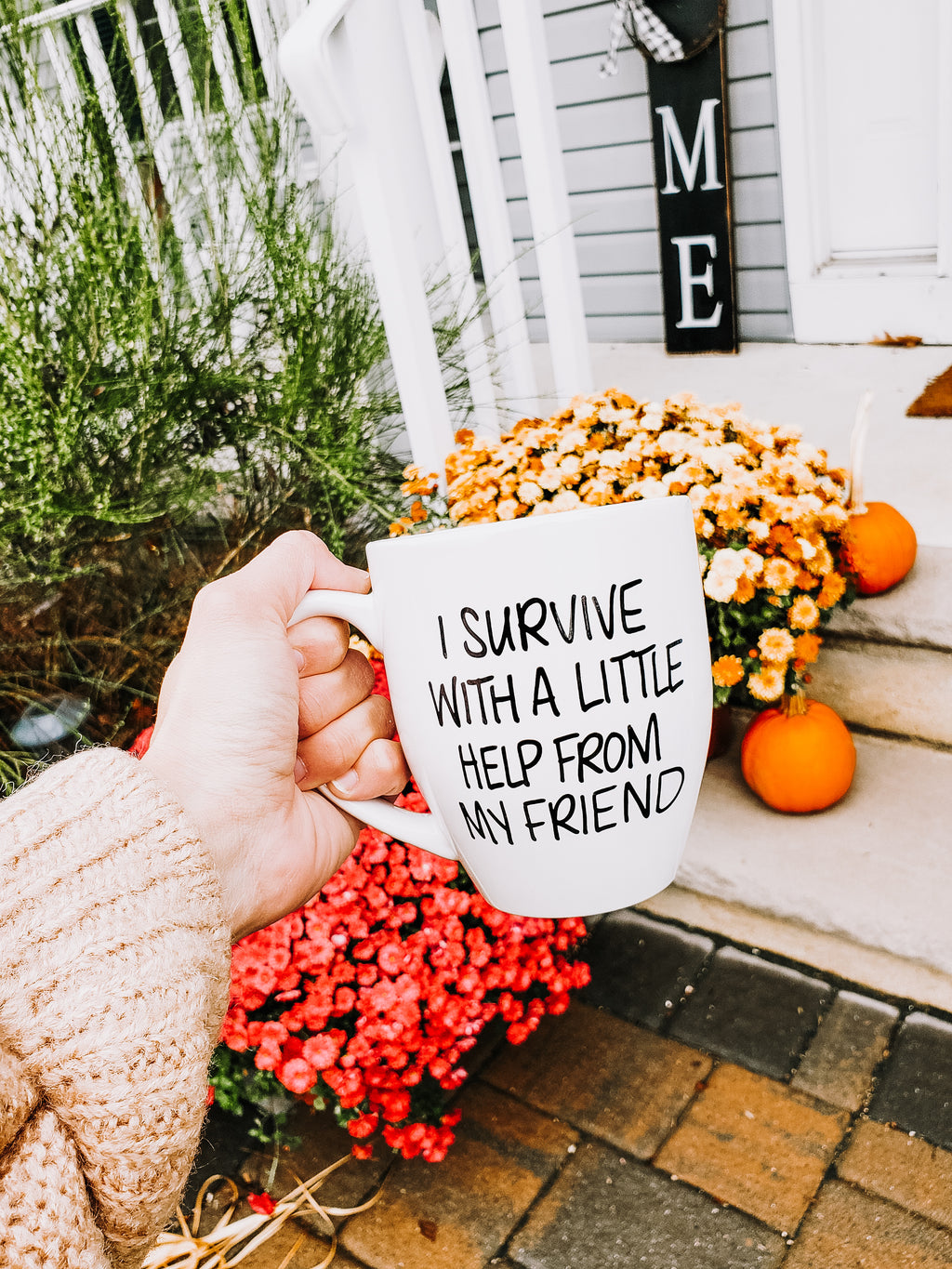 I Survive With A little Help From My Friend Mug - Mug