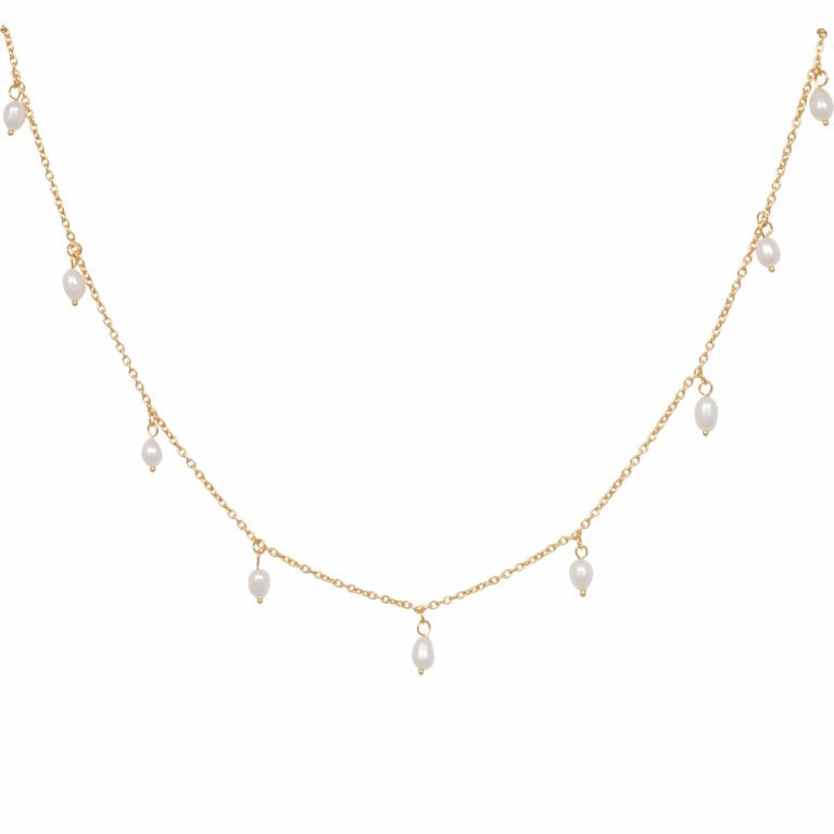 Eline Rosina Multi Freshwater Pearl Necklace in Gold