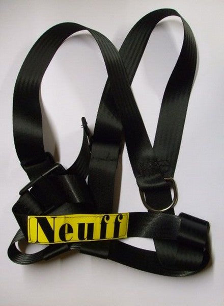 Webbing harness to fit round chest/shoulders.  With a D ring for attaching elastic front or back.