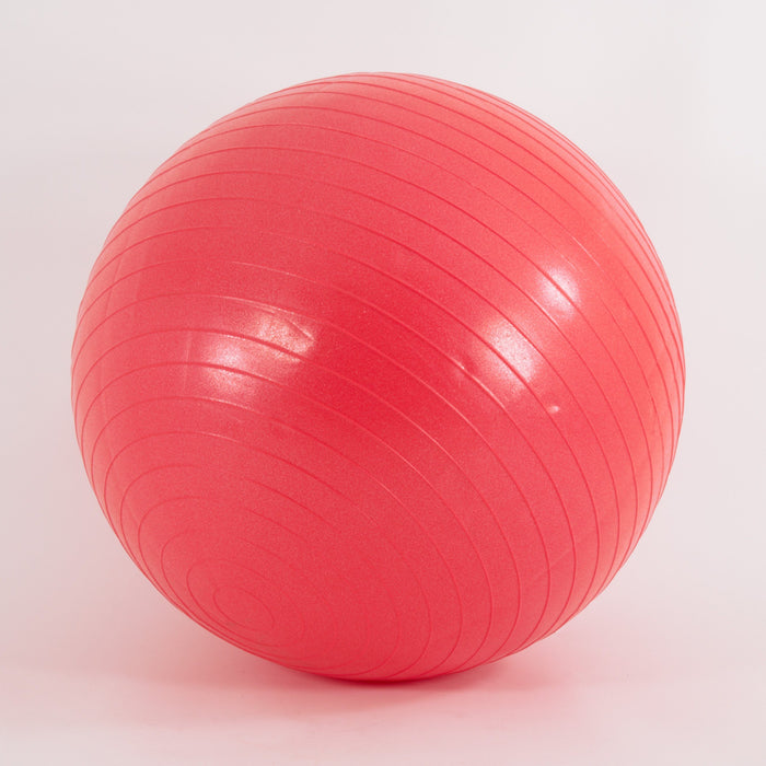 Exercise ball gym ball swiss ball