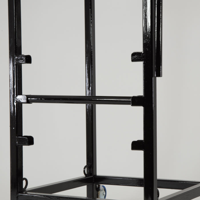 Para-athlete throwing frame
