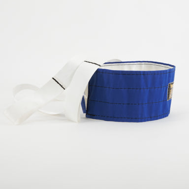 Resistance harness - padded webbing band