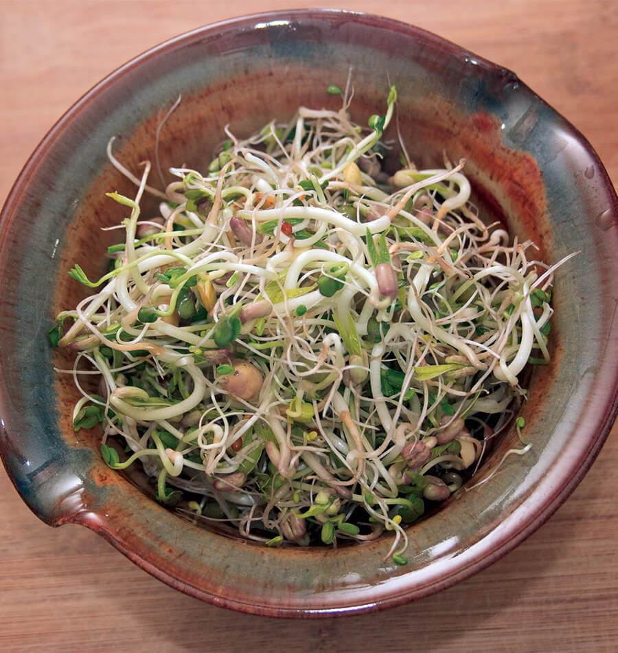 Commit to Grow Day 6: Sprouts