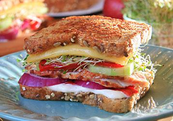 Spicy Sprouts Grilled Cheese Sandwich
