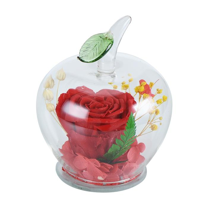Immortal Apple Enchanted Rose Glass Display