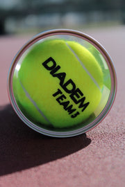 Diadem Premier Team Ball - Case - Diadem Sports