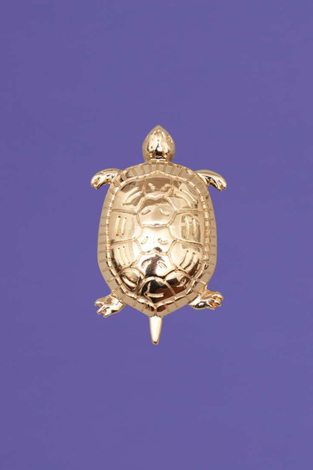 Tortue Gold CLAP