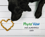 Pack Alimentation naturelle grand chien