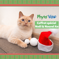 Coffret Noël Chat