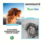 Pack URINAIRE Chat & Chien