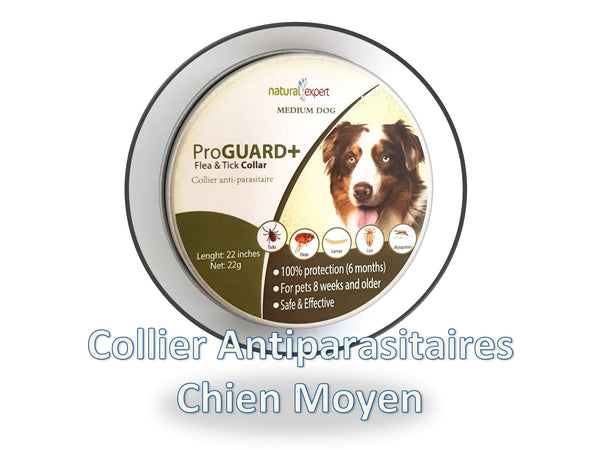 Collier Anti-Parasitaire Chien taille moyenne