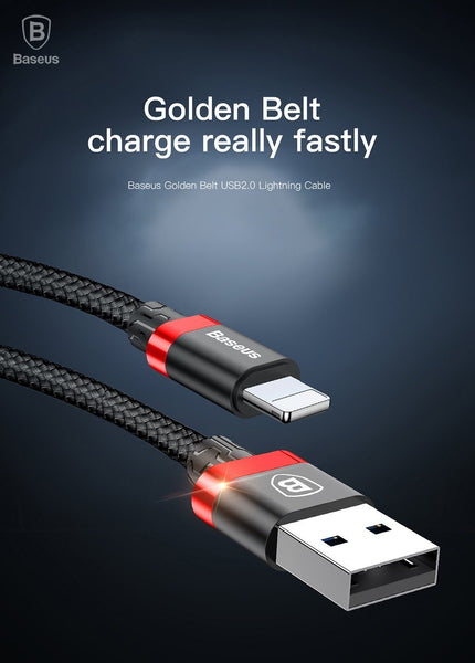 Reversible Ultra Fast Charging USB Data Cable