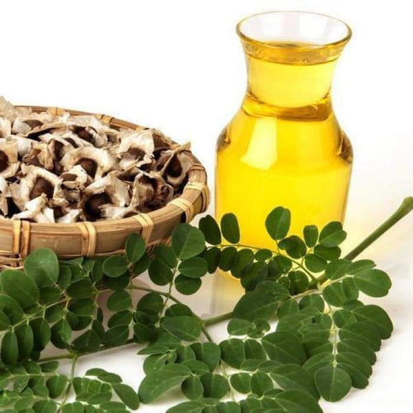 Moringa Oil (Conventional) - 5Lt